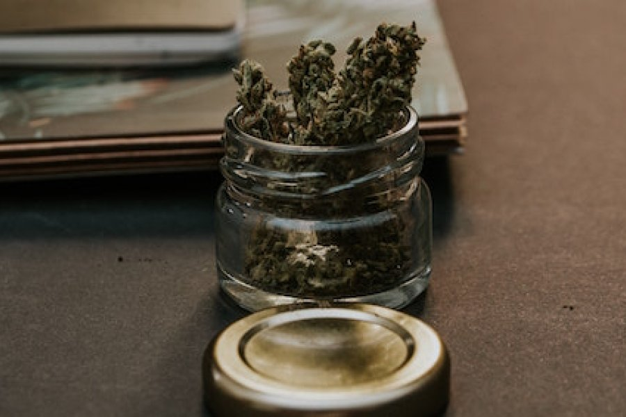 The Differences between Medical Cannabis and Recreational Marijuana | Malie Cannabis Clinic